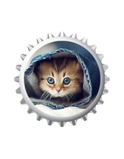 Cat Jean